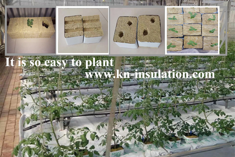 Miracle rock wool cubes for  agriculture