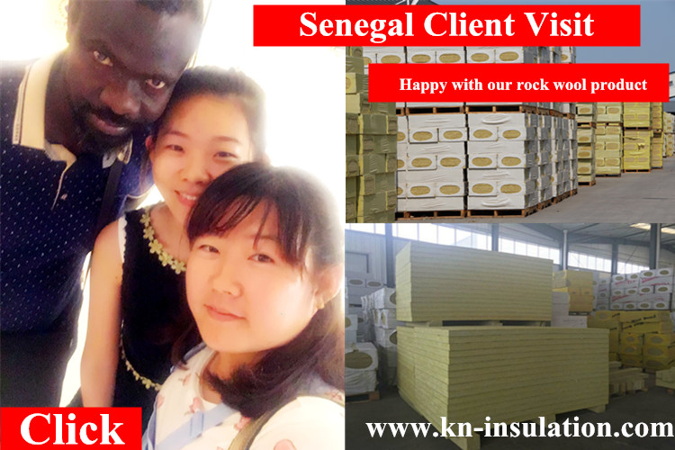Senegal client visit  for rock wool & glass wool product